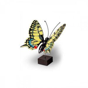 kleine holzern asslinder koninginnepage