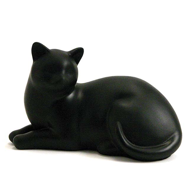 gemutliche katze schwarz
