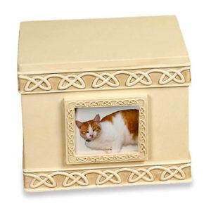 tierurne katze memory box