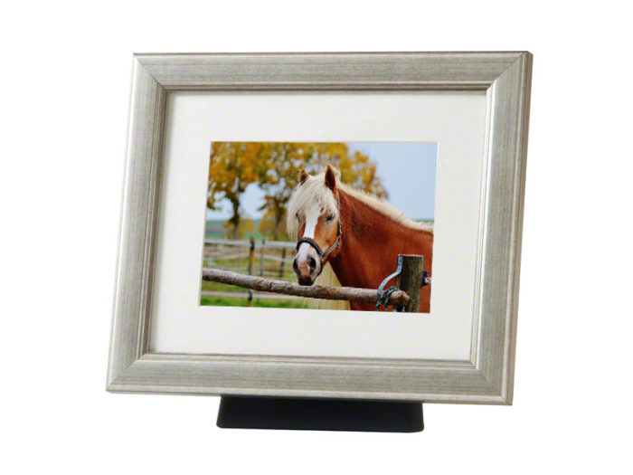 Pferd oder Pony Urne mit hölzernem Fotorahmen Silber (4,0 Liter) Tierurnen