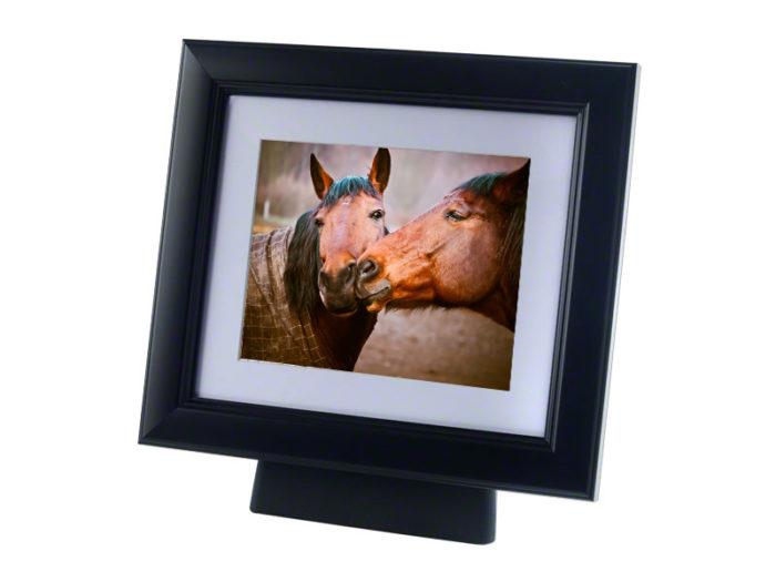 Pferd oder Pony Urne mit hölzernem Fotorahmen Schwarz (4,0 Liter) Tierurnen
