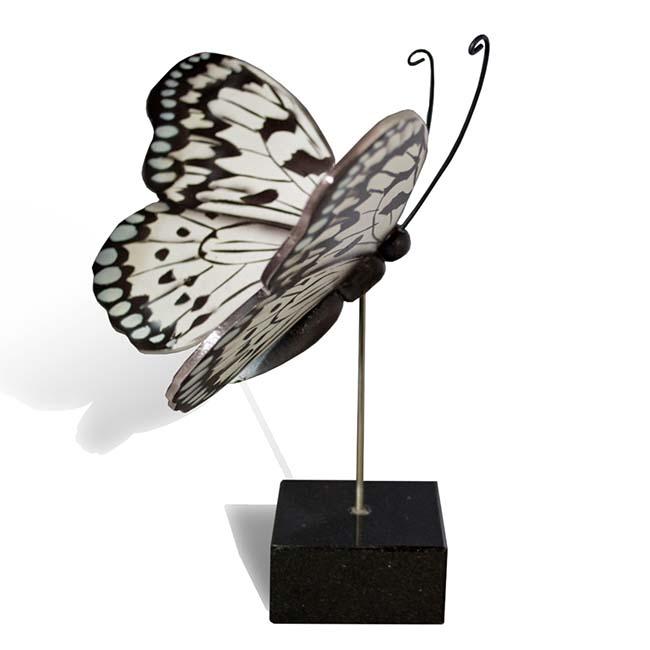 Großer Hölzerner Eschenschmetterling Idee Leuconoe (0,003 Liter) Hölzerne Schmetterlinge für Asche