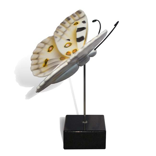 Großer Hölzerner Eschenschmetterling Apollo (0,003 Liter) Hölzerne Schmetterlinge für Asche