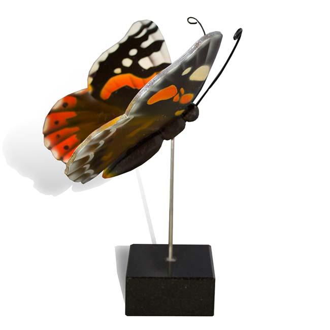 Kleiner Hölzerner Eschenschmetterling Atalanta (0,003 Liter) Hölzerne Schmetterlinge für Asche