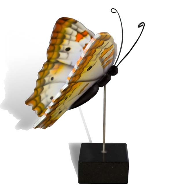 Großer Hölzerner Eschenschmetterling Pfau (0,003 Liter) Hölzerne Schmetterlinge für Asche