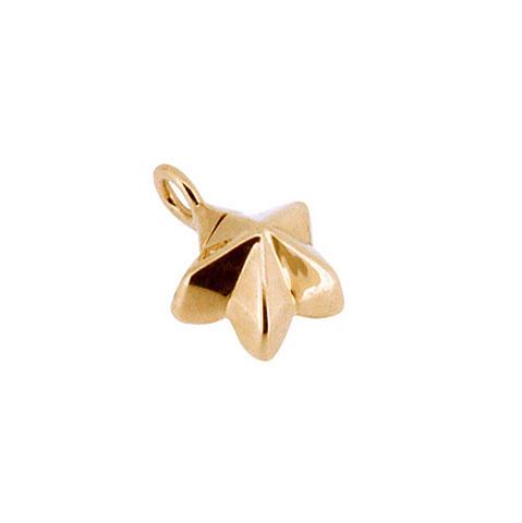 Achsbügel Blume-Stern Gold Asche Schmuck