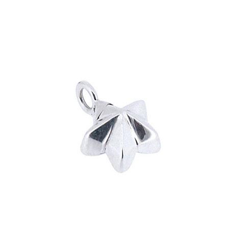 Achsbügel Blume-Stern Silber Asche Schmuck