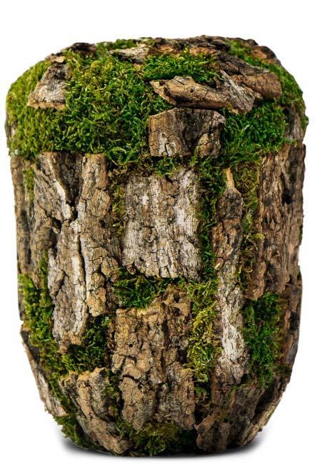 Biologisch abbaubare Öko-Urne Korkeiche Moos (4,0 Liter) Ökologische Urnen