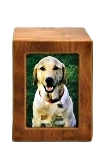 Mittelgroße Holzfoto Tierurne Birke (1,5 Liter) Hölzerne Tierurnen Photobox