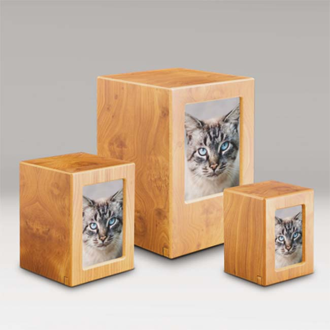 FotoBox Tierurne Kiefer Vorteilset (5,3 Liter) Hölzerne Tierurnen Photobox