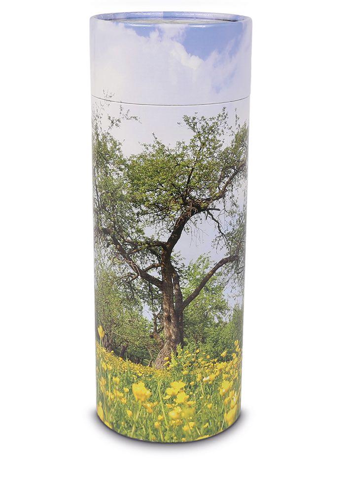 Große Bio Eco Urne oder Aschestreuer Baum (3,0 Liter)